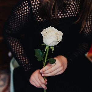 person-holding-white-rose-flower